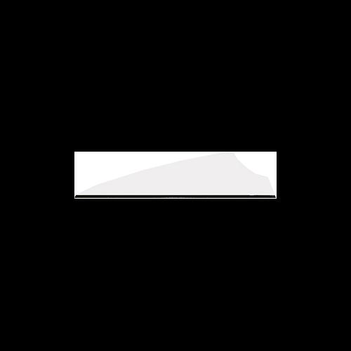 """Q2I Fusion II 2.1"""" White Vanes"""
