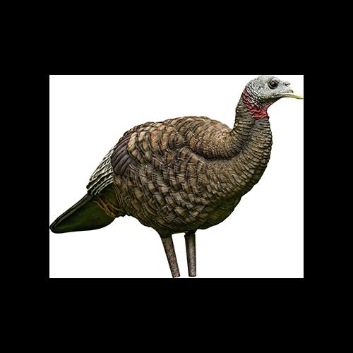Avian X Turkey Decoy Breeder