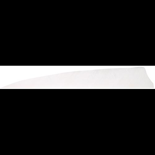 Gateway Shield Cut Feathers White 4 in. RW 100 pk.
