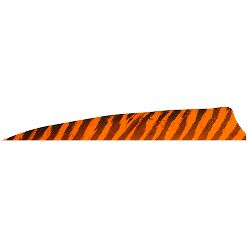 Gateway Shield Cut Feathers Barred Orange 4 in. RW 100 pk.