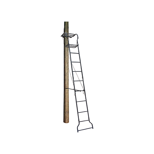 Big Dog Dash Hound Ladder Stand 16 ft.