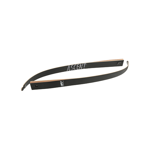 OMP Ascent Limbs 58 in. 50 lbs