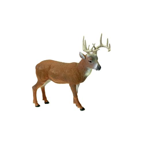 Hunter Dan Whitetail Deer