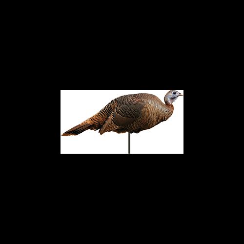 Spring Fling Hen Turkey Decoy