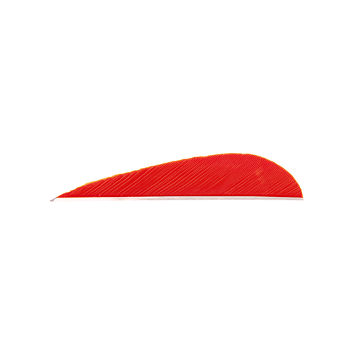 Trueflight Parabolic Feathers Red 3 in. LW 100 pk