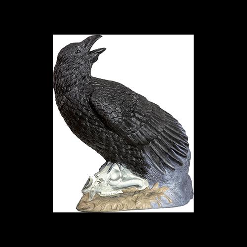 Rinehart Raven Target