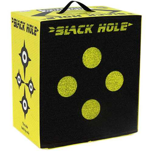 Black Hole Target Largex11