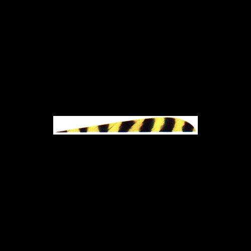 "Trueflight Yellow Bar 4"" LW Feathers"
