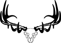 Raxx Elk Skull Bow Holder