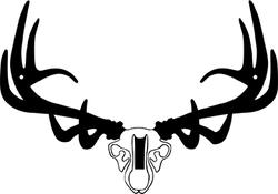 Raxx Mini Elk