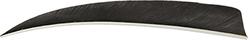 Trueflight Shield Cut Feathers Black 5 in. LW 100 pk.