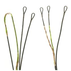 FirstString Premium String Kit Green/Brown Hoyt Spyder30 2 Cam