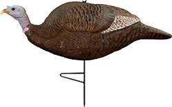 Primos Gobbstopper HD Submissive Hen