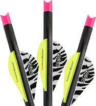 Lumenok Crossbow Bolt Pink Moon 20 in. 3 pk.