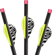 Lumenok Crossbow Bolt Pink Flat 20 in. 3 pk.