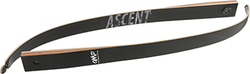 OMP Ascent Limbs 58 in. 40 lbs