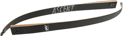 OMP Ascent Limbs 58 in. 20 lbs