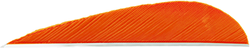 Trueflight Parabolic Feathers Orange 3 in. LW 100 pk