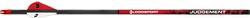 Judgement 400 Arrows w/Vanes w/Aluminum Inserts 12 gr.