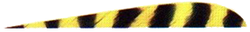 "Trueflight Yellow Bar 4"" LW Feathers"