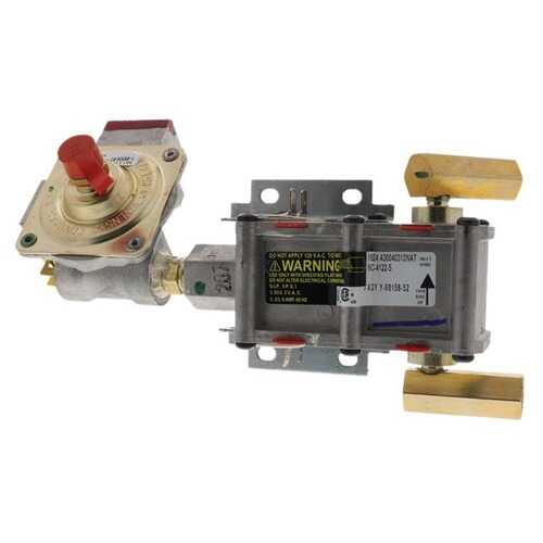 ERP DG94-00449A DG94-00449A Gas Range Assembly, Valve, and Regulator