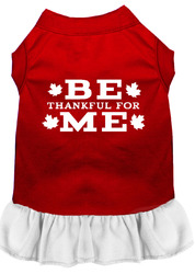 Be Thankful for Me Screen Print Dress Red with White XL (16)