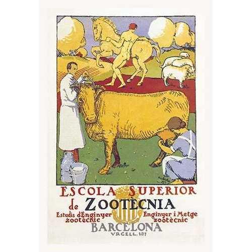 Escola Superior de Zootecnia (Paper Poster)