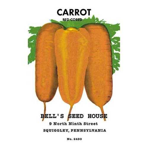 Carrot: Red Cored (Paper Poster)
