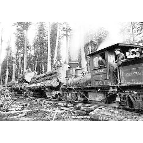Logging Train (Paper Poster)