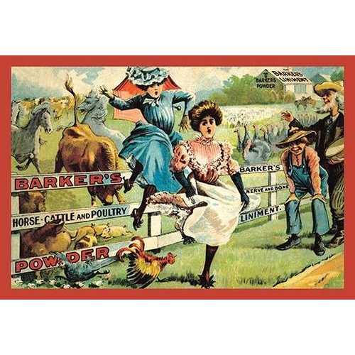 Bucking Broncos Chase Ladies (Paper Poster)