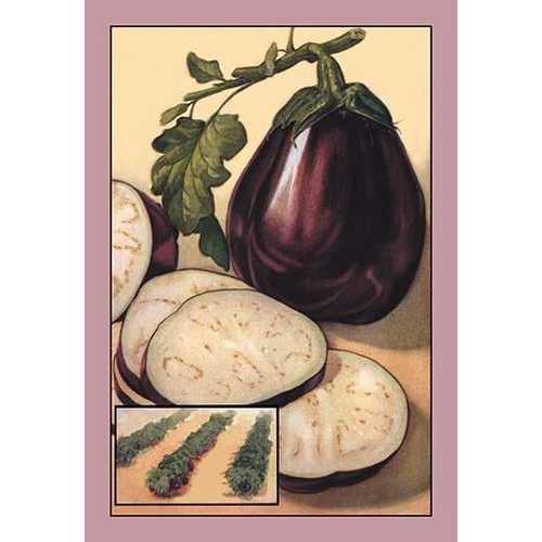 Eggplant (Paper Poster)