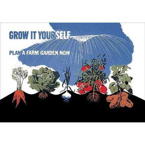 Grow it Yourself (Paper Poster)