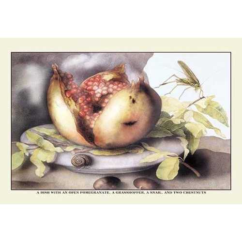 A Dish with a Pomegranate, a Grasshopper, a Snail, and Two Chestnuts (Fine Art Giclee)