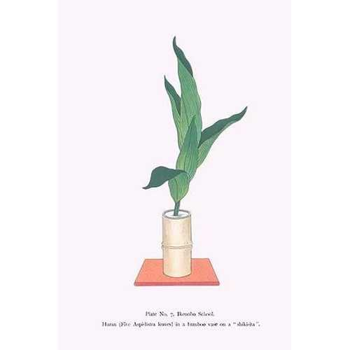 Haran (Five Aspidistra Leaves) in Bamboo vase (Paper Poster)