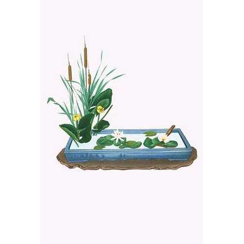 Gama, Kohone & Suiren (Bulrush & Water Lilies) in a Suiban (Canvas Art)