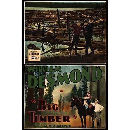 Big Timber (Framed Poster)
