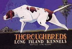 Thoroughbreds - Long Island Kennels (Canvas Art)