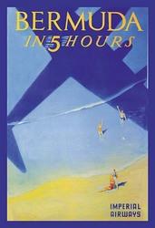 Bermuda in 5 Hours (Paper Poster)