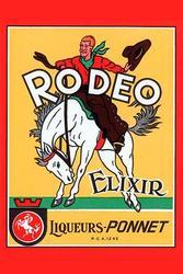 Rodeo Elixir (Canvas Art)