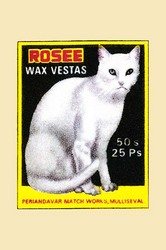 Rosee (Paper Poster)