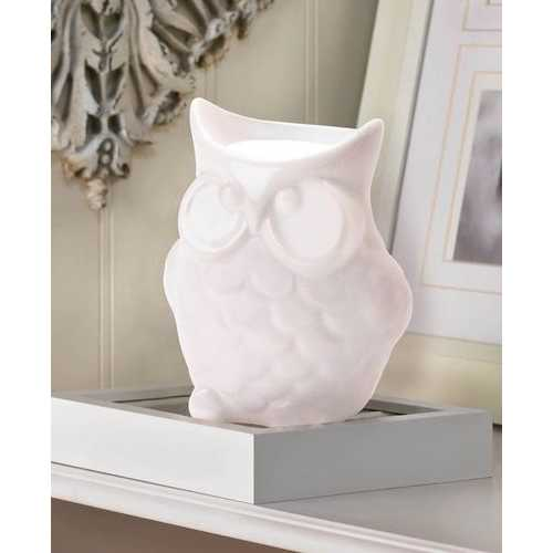 Friendly Owl Oil Warmer