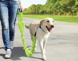 Reflective Dog Leash Set