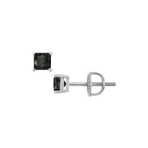14K White Gold : Princess Cut Black Diamond Stud Earrings – 0.50 CT. TW.