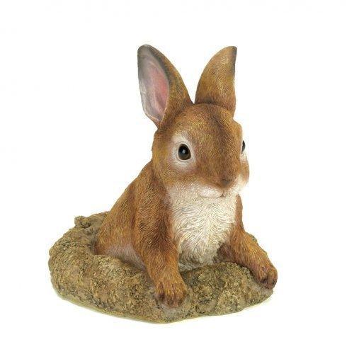 Curious Bunny Garden Decor (pack of 1 EA)