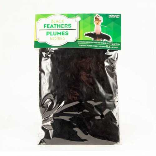Black Craft Feathers (pack of 30)