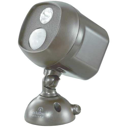 Acclaim Lighting Motion-activated Led Spotlight (bronze) (pack of 1 Ea)