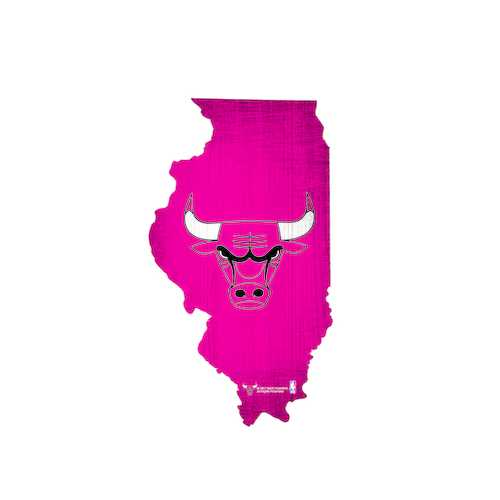 Chicago Bulls Sign Wood 12 Inch Team Color State Shape Design